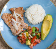 Latin American cuisine fusion Royalty Free Stock Images