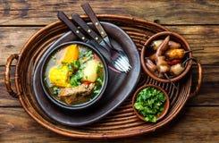 Latin - amerikansk mat Traditionell chilensk grisköttsoppacazuela Cazuela Chilena arkivbild