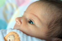 Latin baby girl Stock Image