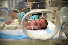 Latin baby girl crying. Newborn Latin baby girl crying as a doctor is taking her vitals Royalty Free Stock Photos