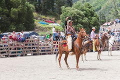 Latin cowboy competition Royalty Free Stock Images