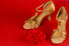 decde7f9c Latin dance shoes. With red flower are on red background royalty free stock  image