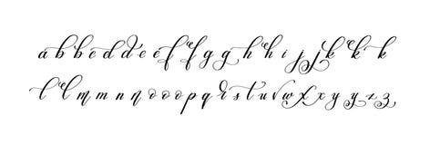 Latin hand written alphabet design - little letters. Calligraphy vector illustration Royalty Free Stock Photos