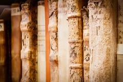 Free Latin Manuscripts Royalty Free Stock Photos - 20313698