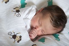 Latin newborn baby girl sleeping peacefully Royalty Free Stock Photos