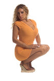 Latin Spice Royalty Free Stock Photo