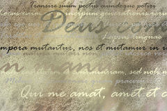 Latin text on brown grunge background Royalty Free Stock Photography