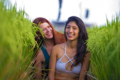Latin woman and her attractive red hair girlfriend both girls enjoying Summer holidays together on rice field smiling happy. Young beautiful latin women and her royalty free stock photography