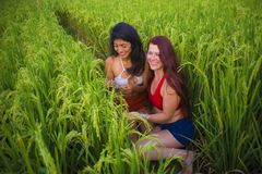Latin woman and her attractive red hair girlfriend both girls enjoying Summer holidays together sitting on rice field smiling stock images