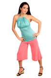 Latina à moda Imagens de Stock Royalty Free