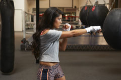 Latina Beauty Boxing Royalty Free Stock Photos