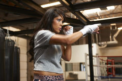 Latina Beauty Boxing Royalty Free Stock Image