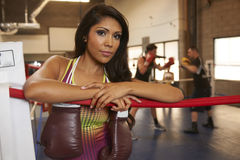Latina Beauty Boxing Royalty Free Stock Photo