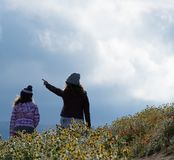 Latina Mother and Daughter in front of desert California Poppy field on path with orange and yellow flowers stock photo