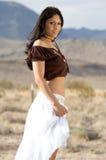 Latina no deserto foto de stock royalty free