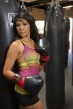 Latina skönhetboxning Royaltyfri Fotografi