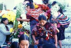 LATINAMERIKA CHICHI GUATEMALA Royaltyfria Bilder