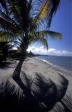 LATINAMERIKAHONDURAS CARIBIAN HAV Fotografering för Bildbyråer