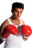 Latino Boxer. Young undiscovered boxer ready to to fight Stock Images