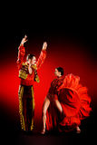 Latino dancer. Professional dancers perform latino dance. Passion and expression Royalty Free Stock Photography