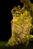 latino de danseurs Photo libre de droits