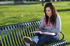 Latino Woman student studying Stock Photography