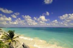 Latitude Adjustments. Beach off the coast of Tulum, Mexico Royalty Free Stock Images
