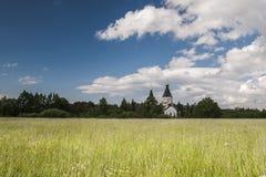 Lato łąka po środku dnia Zdjęcia Royalty Free