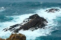 Lato Atlantyckiego oceanu skalista linia brzegowa & x28; Algarve, Portugal& x29; Zdjęcie Stock