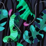 Lato bezszwowy wzór, tło, tropikalni kwiaty, bananów liście i zebr linie/, ilustracji