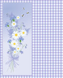 Lato cornflower Zdjęcia Royalty Free