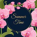 Lato czasu wianku ramy menchii orchidei kwiatów karta Obrazy Royalty Free