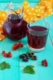 Lato deaktywaci napój - kompot jagody czerni, czerwony rodzynek w dzbanku i szkło Obraz Royalty Free