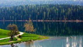 Lato del lago Moritz del san, svizzero del lago Immagine Stock Libera da Diritti