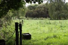 Lato del paese Fotografie Stock