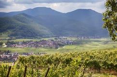 Lato del paese della regione dell'Alsazia Fotografia Stock Libera da Diritti