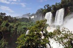 Lato dell'argentino del Iguazu Falls Immagini Stock