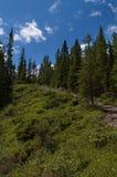 lato della montagna fotografia stock libera da diritti