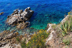Lato denny skalisty brzegowy widok Hiszpania Fotografia Royalty Free