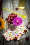 Lato deserowej owoc drewniani agrestowi kolorowi napoje Fotografia Stock