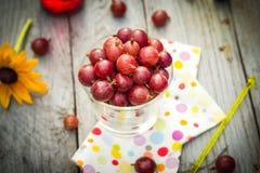 Lato deserowej owoc świezi agrestowi kolorowi napoje drewniani Obrazy Royalty Free