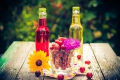 Lato deseru ogródu owocowi agrestowi kolorowi napoje Zdjęcie Stock
