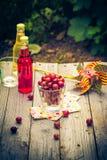 Lato deseru ogródu owocowi agrestowi kolorowi napoje Obrazy Stock