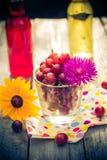 Lato deseru ogródu owocowi agrestowi kolorowi napoje Obraz Stock