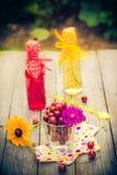 Lato deseru ogródu owocowi agrestowi kolorowi napoje Obraz Royalty Free