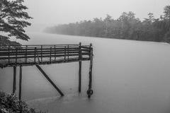 Lato deszcz Zdjęcia Stock