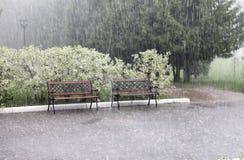 Lato deszcz zdjęcie stock