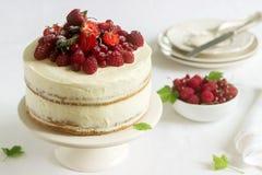Lato domu ciastka tort z curd śmietanką, dekorującą z świeżymi jagodami truskawki, malinki i rodzynki, fotografia royalty free