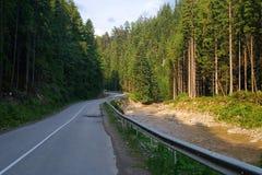 Lato droga Bukovel w Karpackich górach Ukraina fotografia royalty free