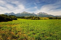 Lato góry krajobraz Obraz Stock